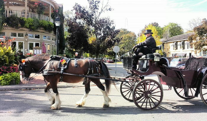 Horse and Carriage in Niagara on the Lake