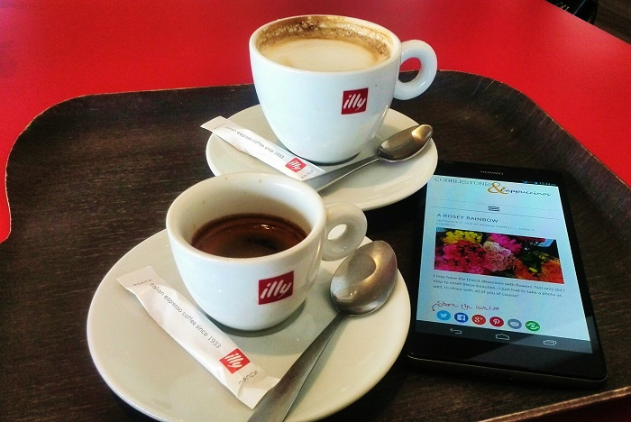 Illy coffee cups