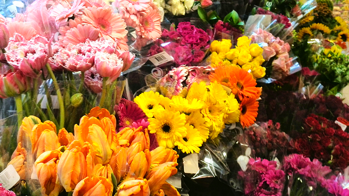 An assortment of colourful flowers
