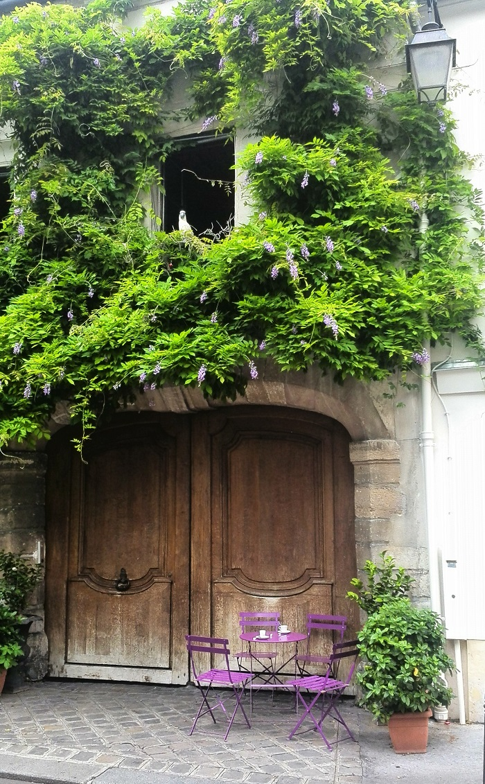 Greenery growing on the side of an apartment in Paris