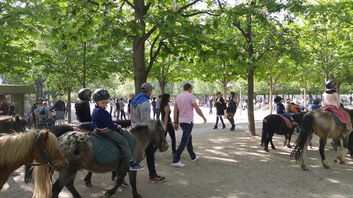 Pony rides, Jardin de Luxembourg, Paris, France