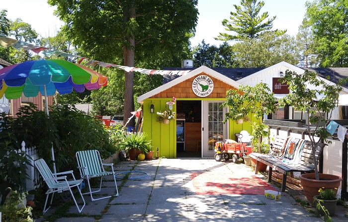 Juice Bar, Bayfield Ontario